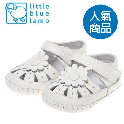 美國小藍羊 littlebluelamb 人氣商品