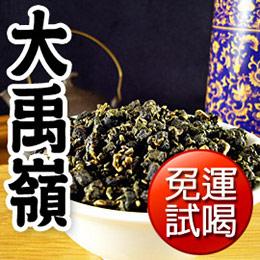 大禹嶺手採高山茶