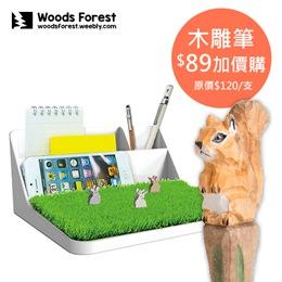 大森林小草皮桌面整理收納架
