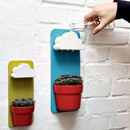 創意壁掛式花盆栽 - 多肉植物