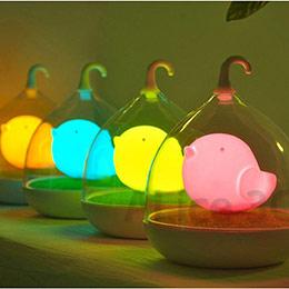LED小夜燈 小鳥燈 鳥籠燈