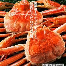 松葉蟹1.2kg(600g×2隻)