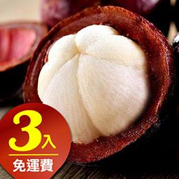 【愛上新鮮】泰國進口鮮凍山竹(3包)