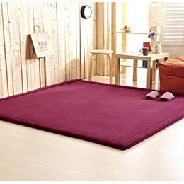 新款日本纖細超厚珊瑚絨地毯