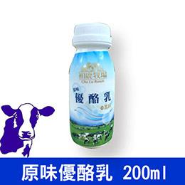 原味高鈣優酪乳12瓶