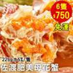 極好食❄下殺5折↘日本佐渡肥美爆黃母花蟹6隻(約6兩/隻) 0