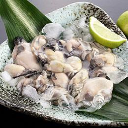 澎湖超肥Q彈牡蠣