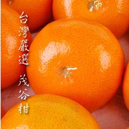 【喜果】茂谷柑禮盒 (12入/禮盒)