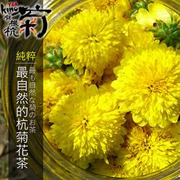 台灣自然農法杭菊花茶