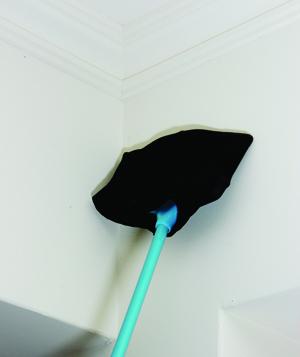 天花板 清理