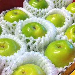 岡山牛奶蜜棗禮盒★12粒入