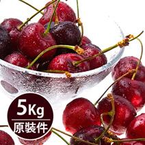 冬季紅寶石智利櫻桃原裝件(5kg/箱)