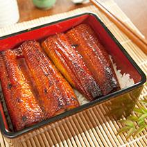 日式蒲燒鰻1尾入500公克 3人用