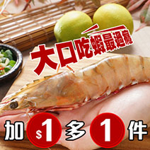 【野生海大蝦10條】單隻近20公分