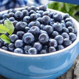 美國進口★急凍花青莓果3公斤