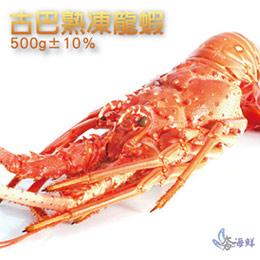 古巴熟凍龍蝦500g★A+等級