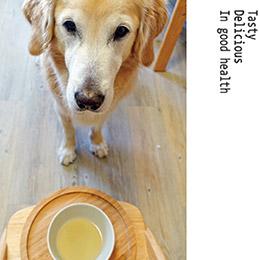 寵物優質高營養滴雞精【1盒12入】
