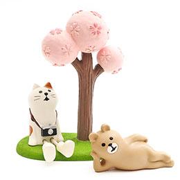 花團錦簇盛開櫻花樹