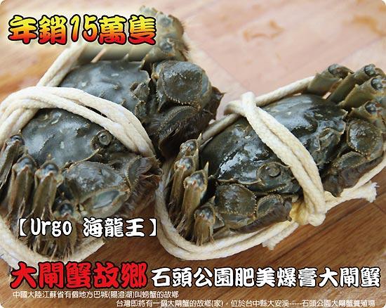Urgo二館-台中石頭公園專業養殖場大閘蟹。