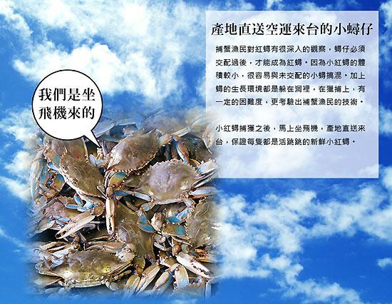 台北濱江-東南亞產地直送空運進口鮮活小紅蟳。