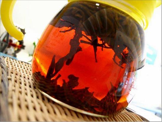 部落客, 阿里山,金萱茶,蜜香紅茶,高山茶,茶葉
