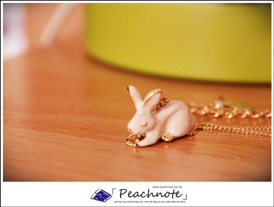 這一條是跟我的松鼠有血緣關係(?)的日本Kaza白兔休憩搖曳花兒項鍊