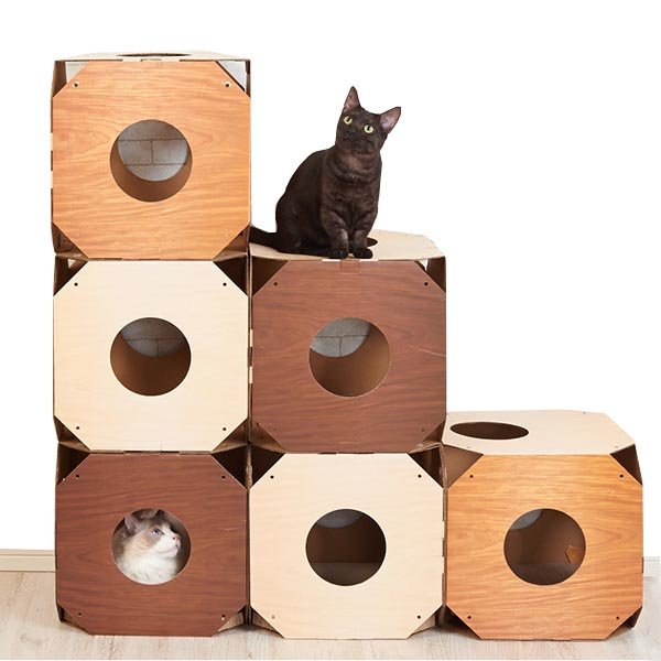 Cat towers