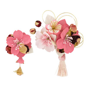 Cherry Blossom Hair Accessories
