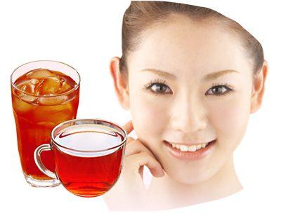 Rooibos Tea 100 个入