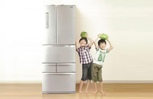 無氟新冷媒電冰箱