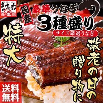 超大豪華蒲燒鰻魚組合