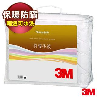 Thinsulate輕透可水洗特暖被 (標準雙人6x7) Z500