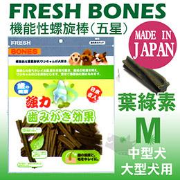 《 日本機能潔牙骨》螺旋五星雙效造型M號