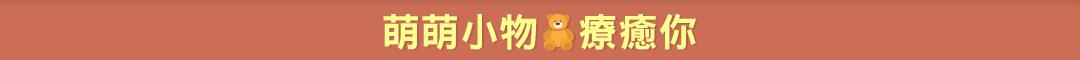 萌萌小物專區9折up