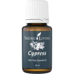 Cypress絲柏精油-15ml