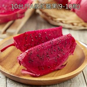 A級紅龍果10台斤