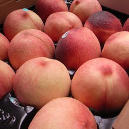 空運加州水蜜桃1箱(16-18顆/箱/約5.5kg)