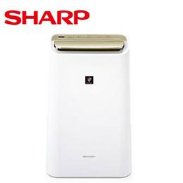 SHARP 夏普 DW-E10FT 10L 自動除菌離子除濕機