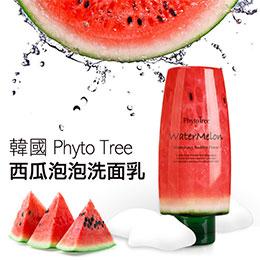 韓國Phyto Tree 西瓜泡泡洗面乳