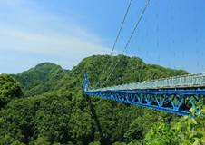 高度達100公尺 茨城県「龍神大吊橋」為高空彈跳勝地