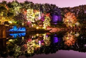 東京豐島區「目白庭園」如夢似幻的夜間回遊式庭園