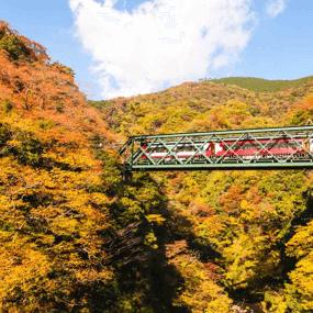 日本住宿訂房推薦:箱根