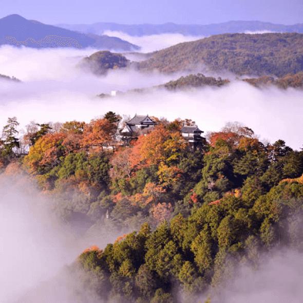 日本旅遊必去景點:宮島