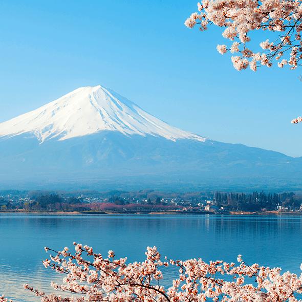 日本自由行推薦:在富士山旁乘坐獨木舟暢遊河口湖