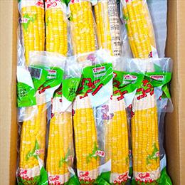 日北北海道.甜玉米