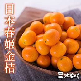 日本 鹿兒島.春姬金桔禮盒(1.2kg)