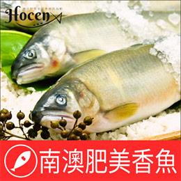 海鮮的專家←中秋特惠專區