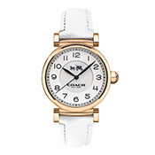 COACH 時尚腕錶