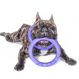寵物訓練圈PULLER迷你型