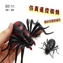 整人遙控蜘蛛蟑螂